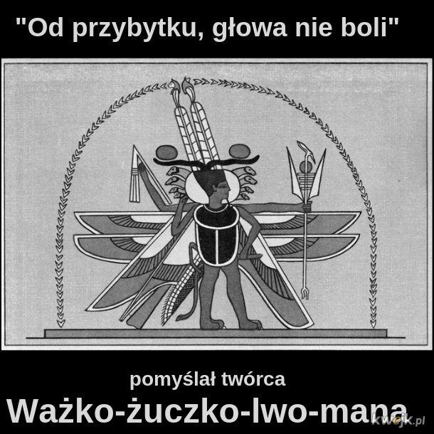 Ważko-żuczko-lwo-man
