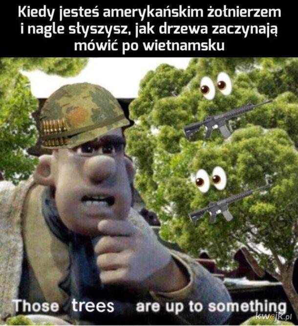 To chyba nie drzewa