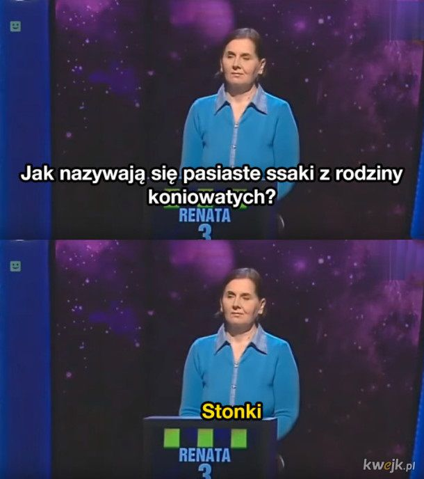 Wpadki w polskich teleturniejach