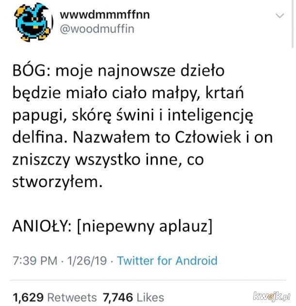 ef36f6e1ace401 Dzieło stworzenia - Ministerstwo śmiesznych obrazków - KWEJK.pl