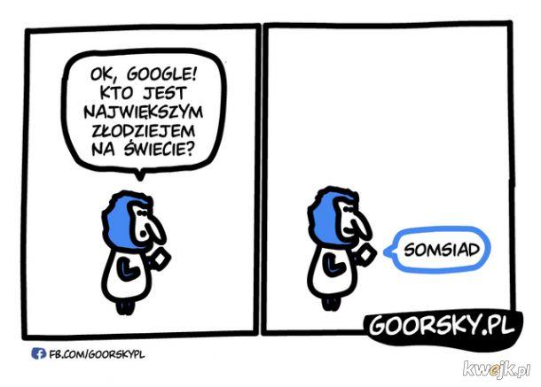 Asystent Google w Polsce