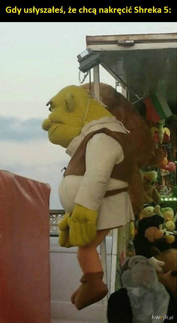 Shrek Najlepsze Memy Zdjęcia Gify I Obrazki Kwejkpl