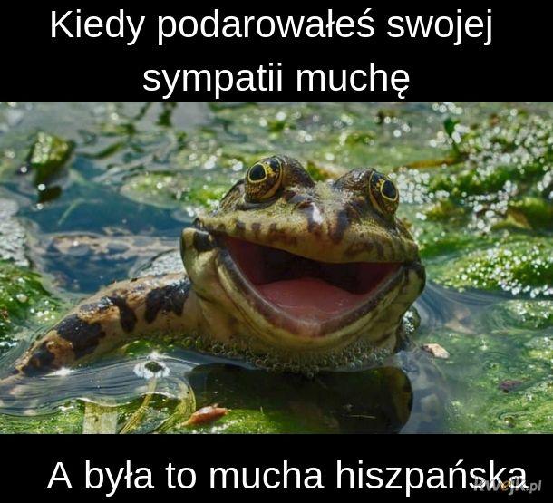 Mucha