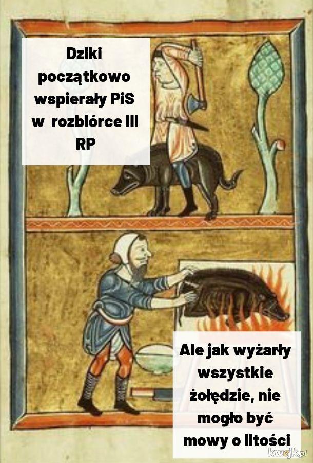 Średniowieczne dziki