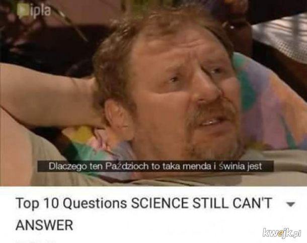 Top 10 pytań