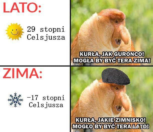 Janusz pogodowy
