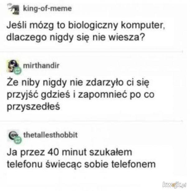 Mózg to biologiczny komputer