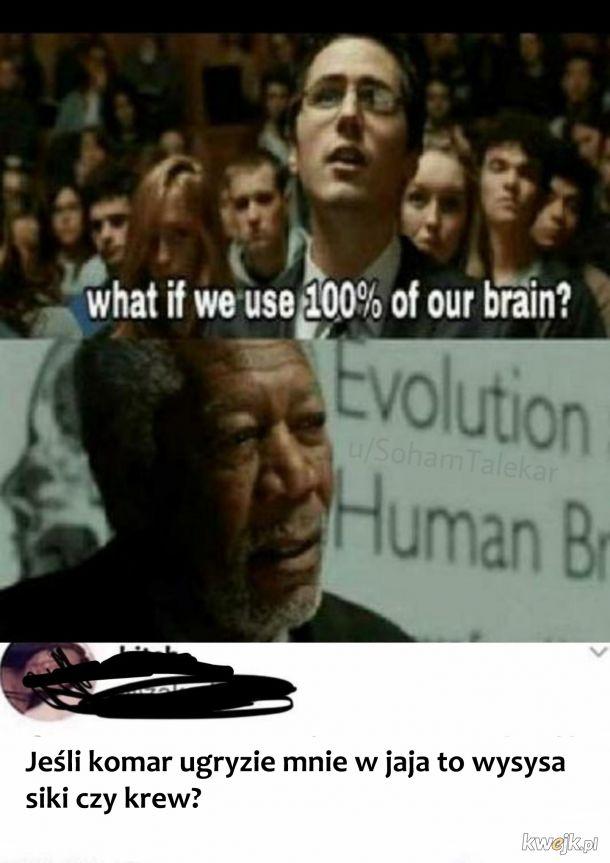 Używanie mózgu