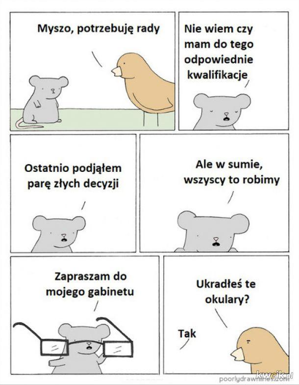 Doktor mysz
