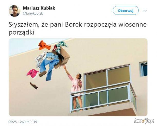 Pani Borek