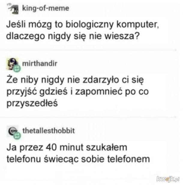 Biologiczny komputer