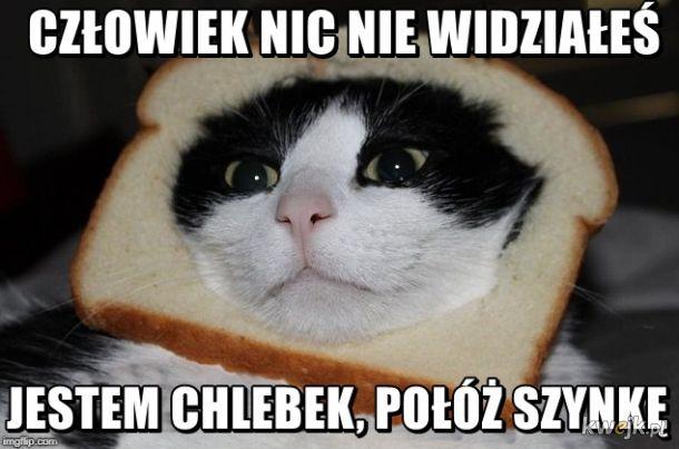 Dziwny chleb