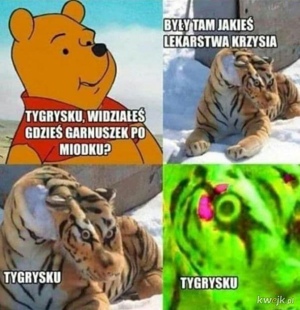 Tygrysek chyba przesadził