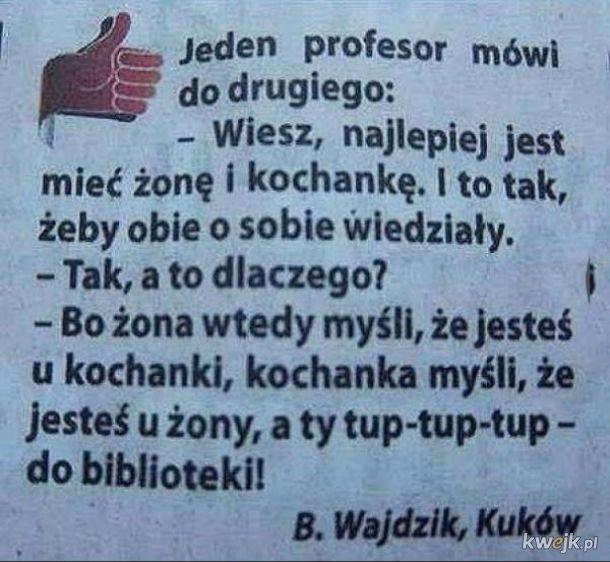 Profesorowie