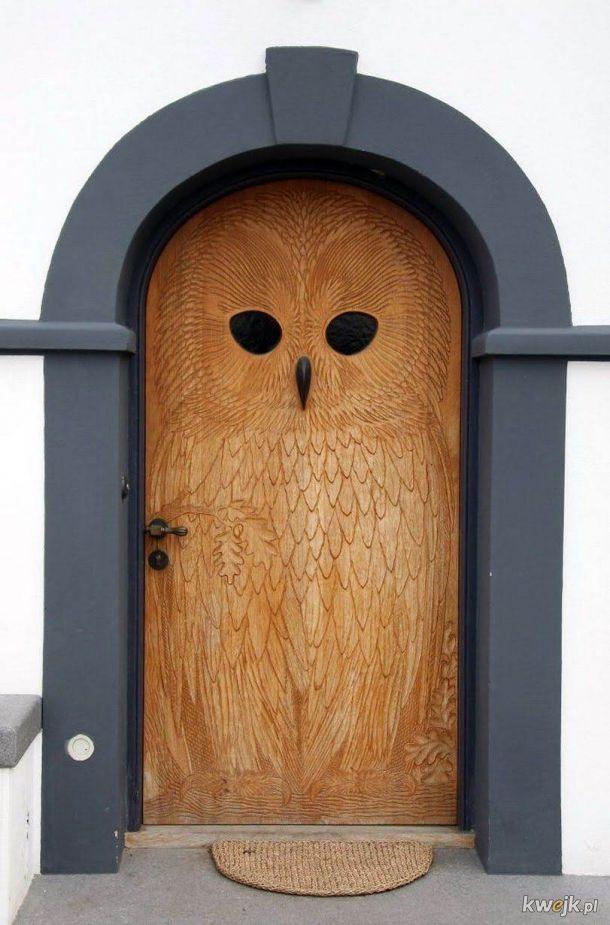 drzwi w ksztalcie sowy