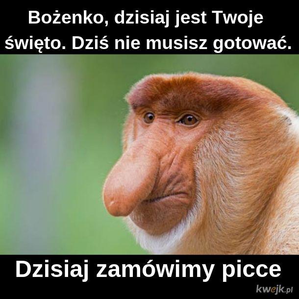 Janusz dżentelmen