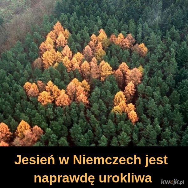 Jesień w Niemczech