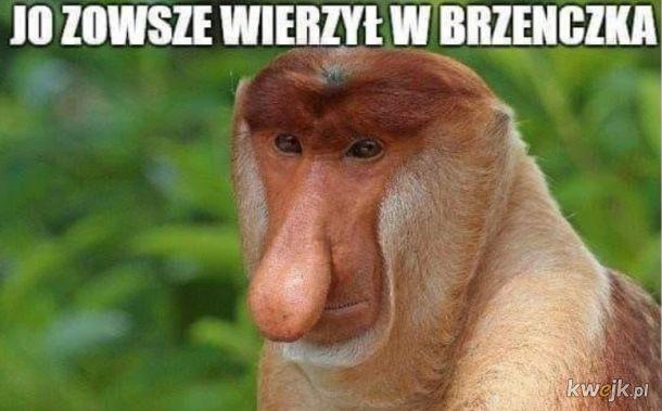 Memy po meczu Polska-Łotwa, obrazek 3
