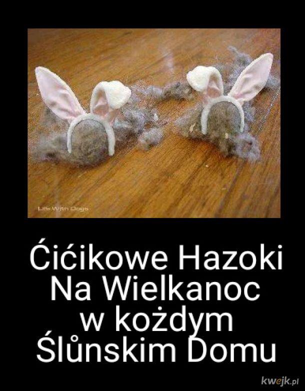 Ćićikowe Hazoki