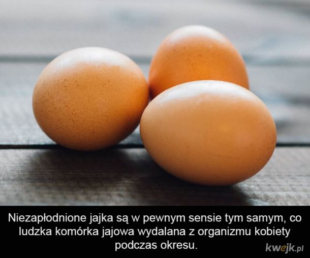 Smacznego jajka :v