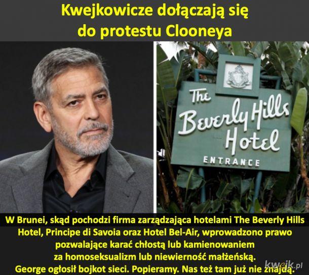 Dołączysz do bojkotu Georga Clooneya? Plusuj, minusuj, komentuj, rób co chcesz. Ja tych hoteli też więcej nie odwiedzę! Niech ich zaboli!
