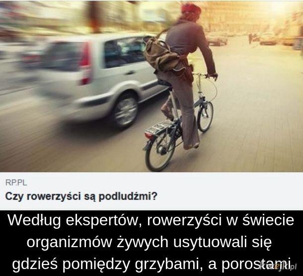 Grzyby, porosty i rowerzyści