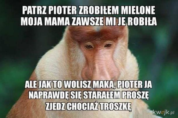 Pjoter, zjedz proszę