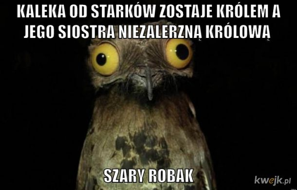 Szary Robak Mindf**k