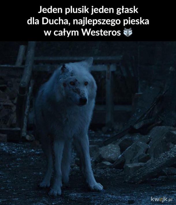 PET THAT DAMN DOG, JON!
