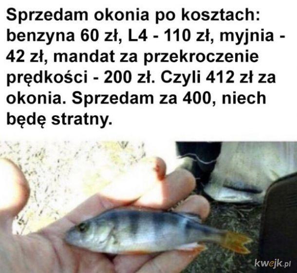 Łowienie ryb się opłaca