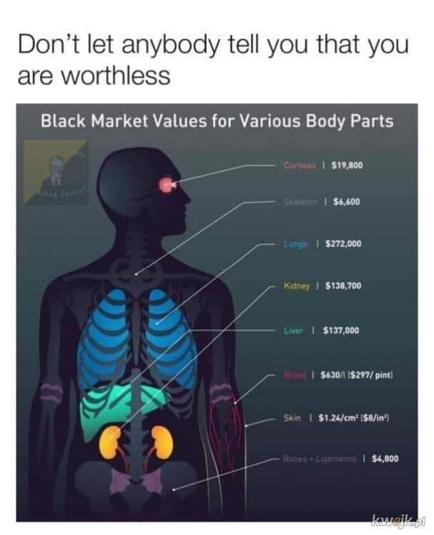 Wszystko ma swoją cenę
