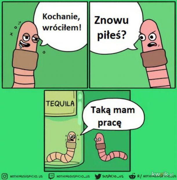 Robaczek