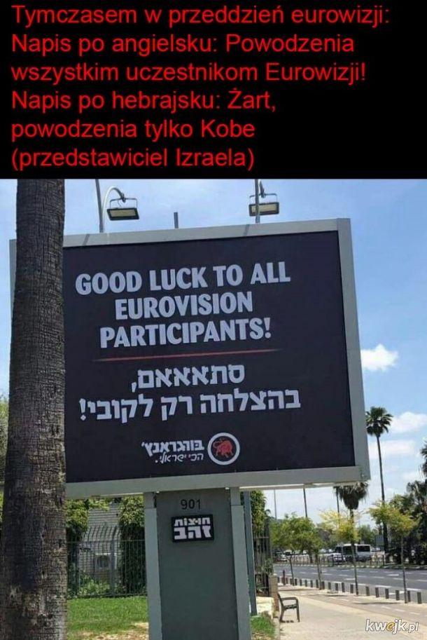 Typowe żydki
