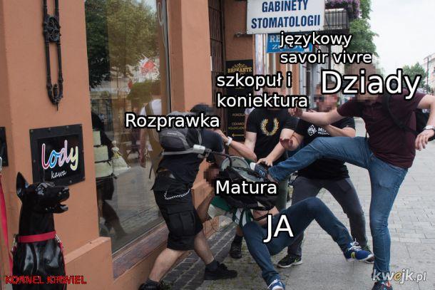 Matura Polski