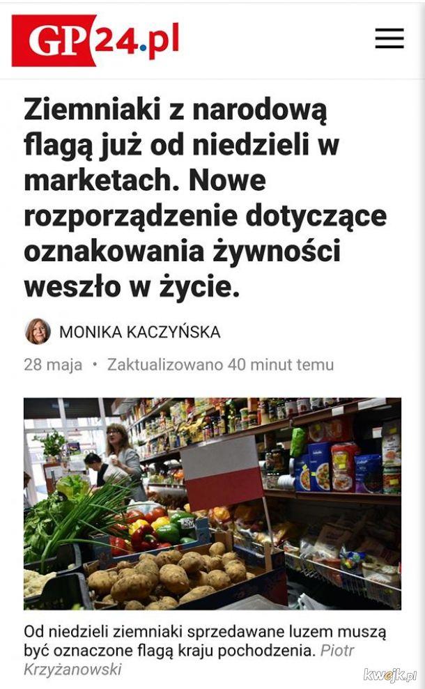 Polska wstaje z kolan.