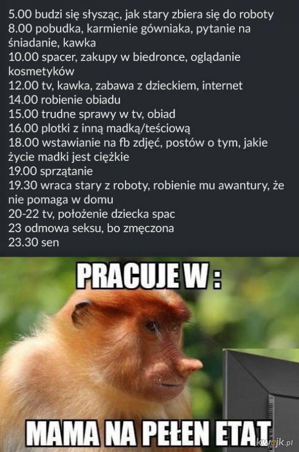 Dzień z życia Madki Polki