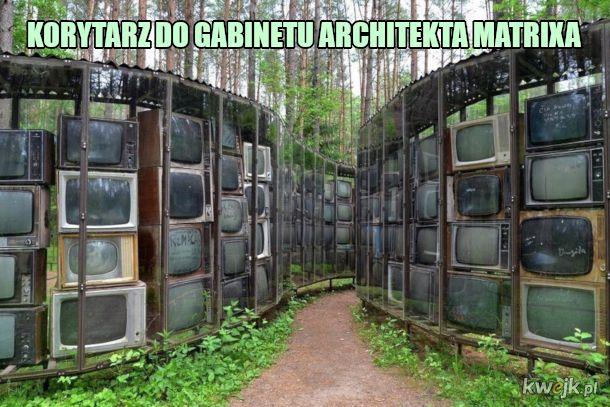 tv las
