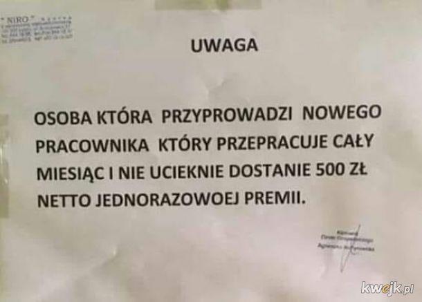 Rynek pracownika w Polsce
