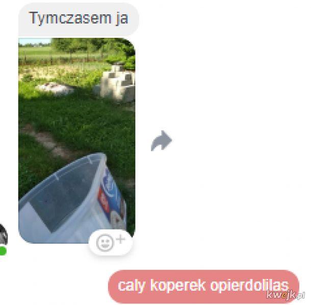 Koperek