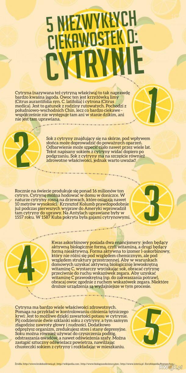5 ciekawostek o cytrynie