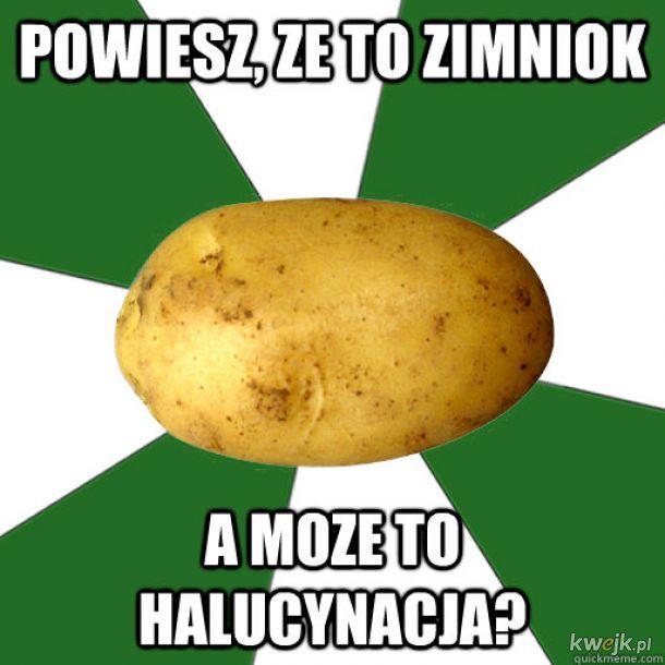 ZIMNOK