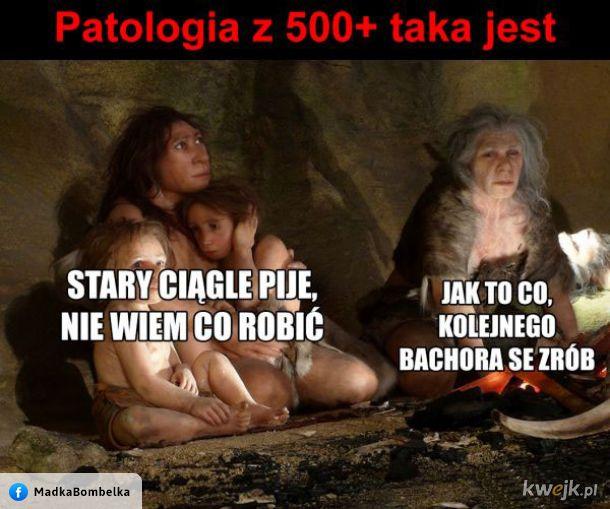 Patologia 500+