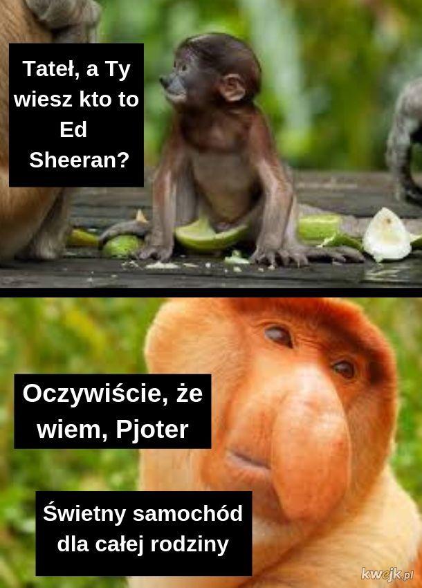 Sharan Sheeran