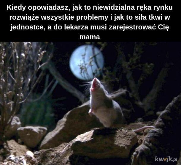 Mysz pozostanie myszą