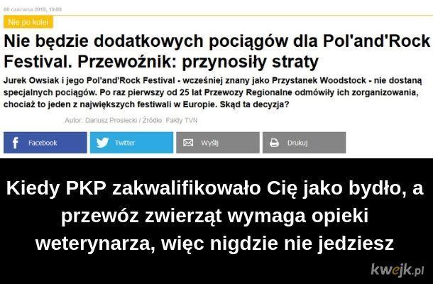 Biedne owsiki :(