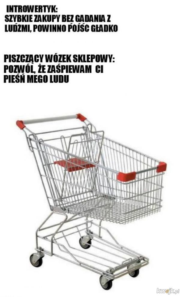 Wózki takie są