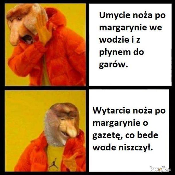 Nosacz