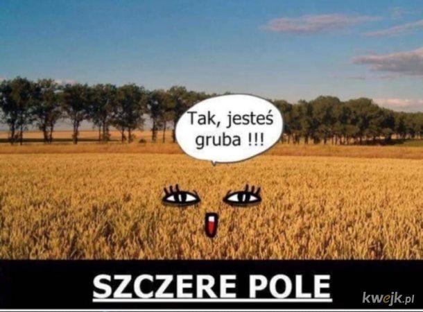 Grubaska