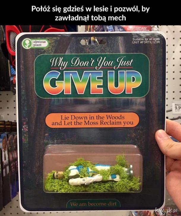 Zabawki, gadżety i książki Obvious Plant