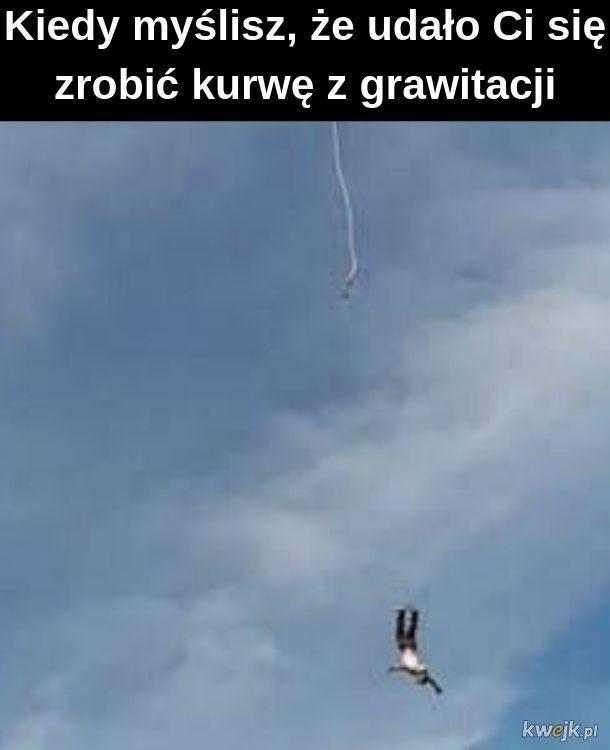 Grawitacja